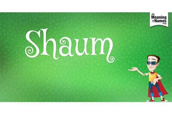shaum-puasa